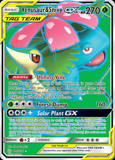 Venusaur & Snivy-GX (CEC 210)
