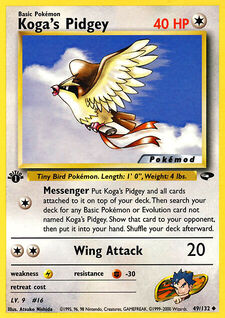 Koga's Pidgey (MODG2 49)