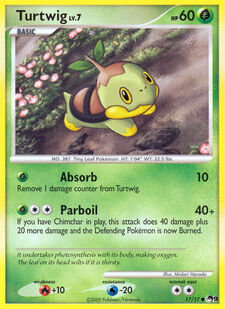 Turtwig (POP9 17)